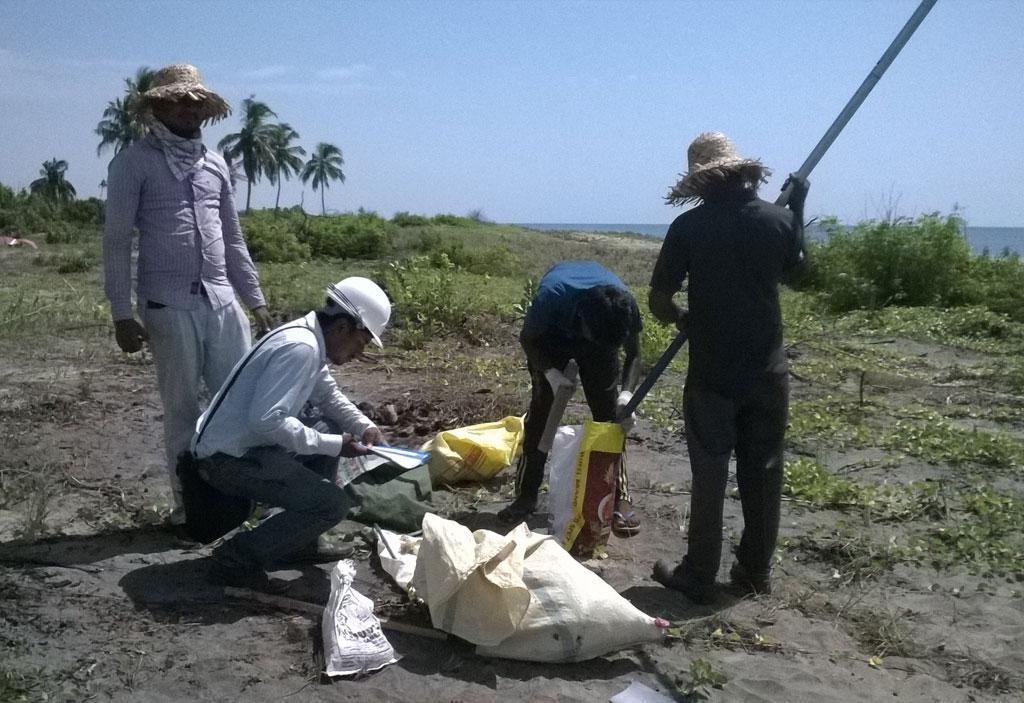 Investigating Mineral Sand